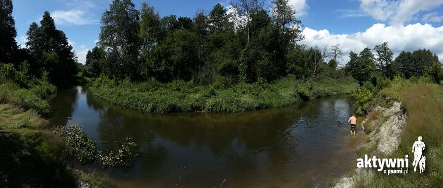 Rzeka Rawka, foto: Piotr Rukat