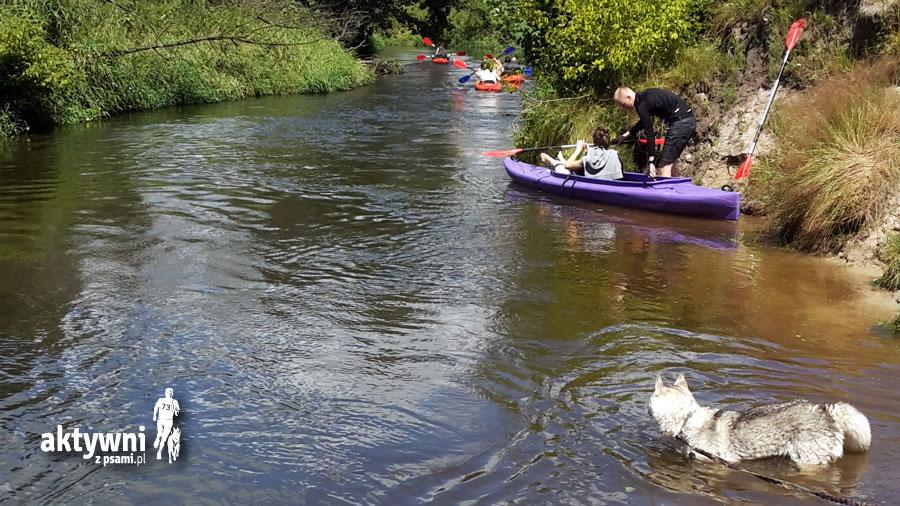 Rzeka Rawka, Bolimowski Park Krajobrazowy, foto: Zuzanna Rukat