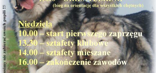 http://www.lesnica.pl/2998/otwarte-mistrzostwa-opolszczyzny-psich-zaprzegow.html