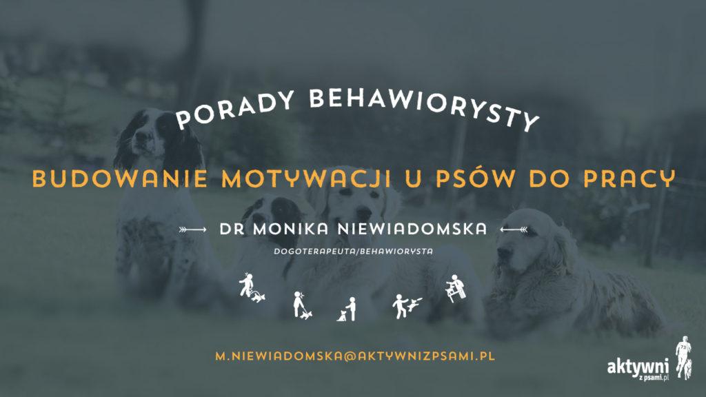 porady_behawiorysty_02