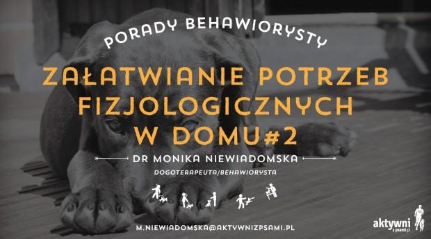 porady_behawiorysty_4