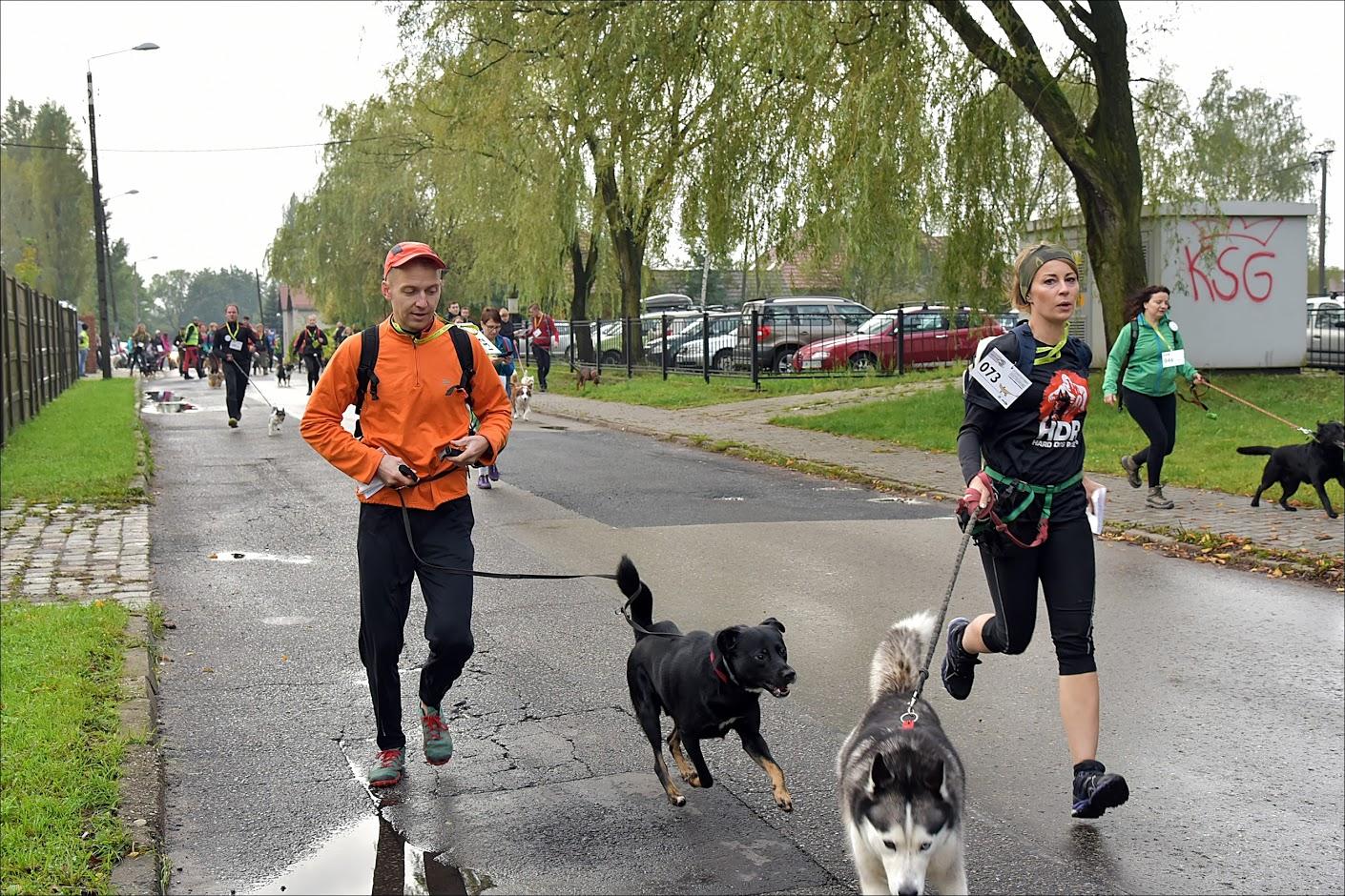 3 Charytatywny Dogtrekking PETSMILE foto: Marcin Mucha